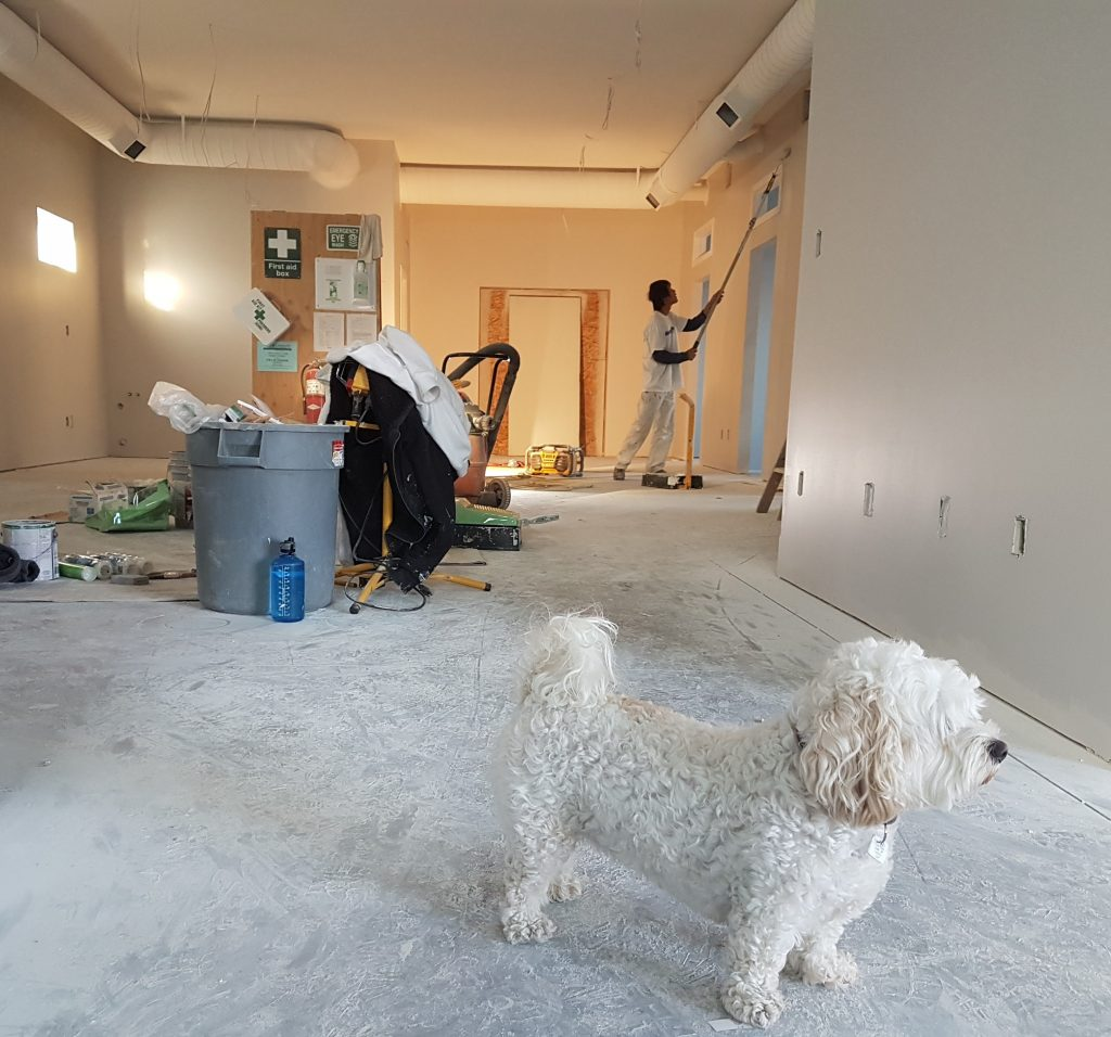 Questions to ask before choosing a remodeling firm